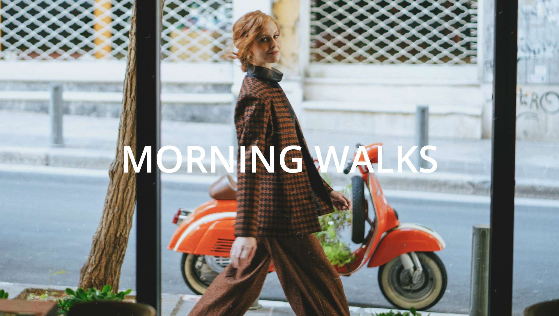 Chapter no.5 Morning Walks